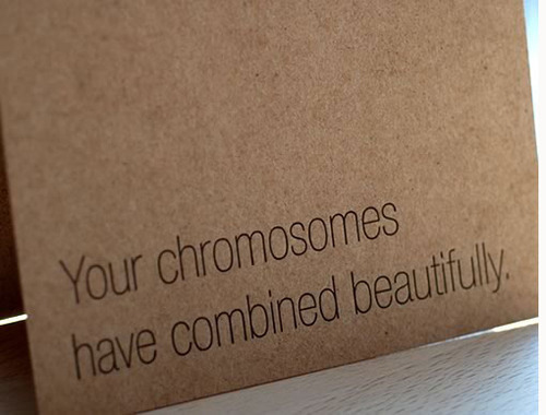 beautiful chromosomes