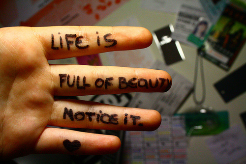 life is full of beauty notice it image